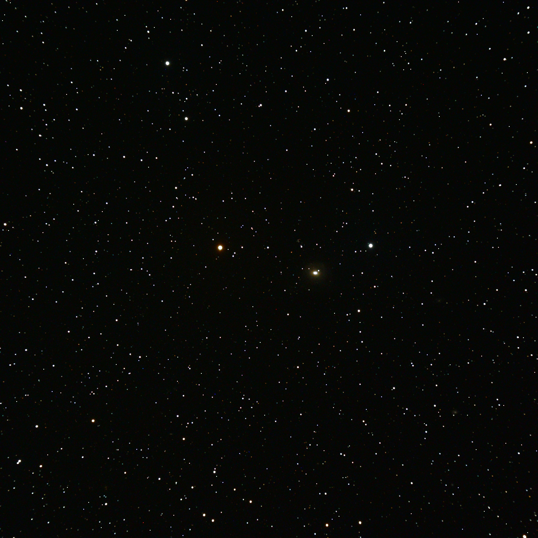 ngc2655.jpg - Just to the right of center is galaxy NGC2655 with a recently discovered supernova.