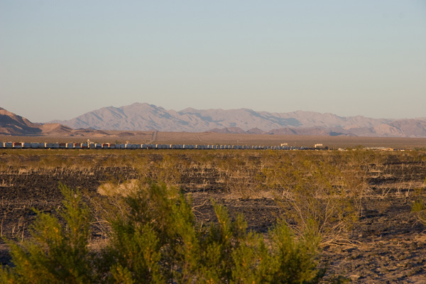 Train near Amboy