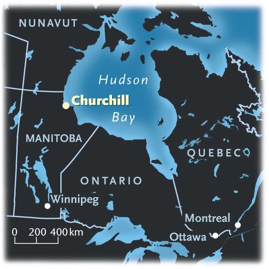 Churchill, Polar Bear Capital of the world, on Hudson Bay